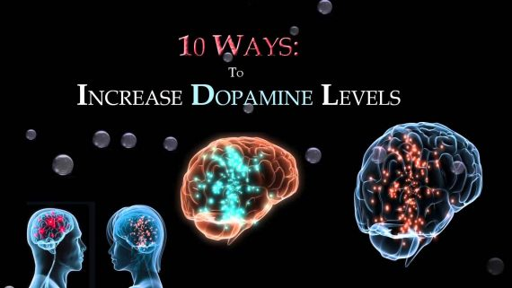 Increase Dopamine Content in Human Body